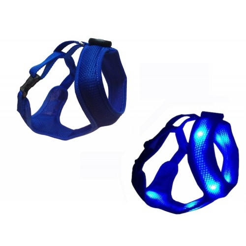 Led * Blue  Dog E Glow Harness