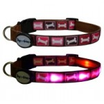 LED Collar and  Matching Lead * Pink Bones