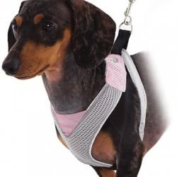 Pink/Grey V Mesh Harness